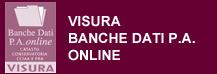 visure-banche-dati